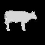 Διαχείριση Κρέατος